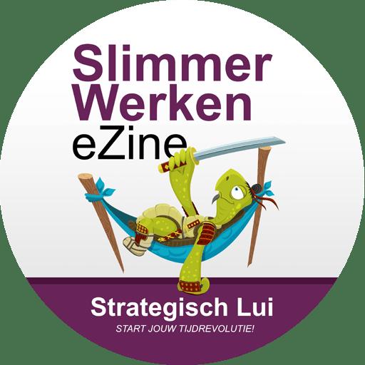 Het Slimmer Werken eZine van Strategisch Lui