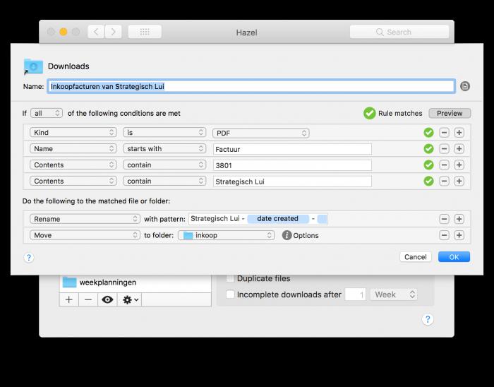 """Via de """"Preview""""-knop in Hazel kunnen we zien of een bepaald bestand zou voldoen aan de voorwaarden"""